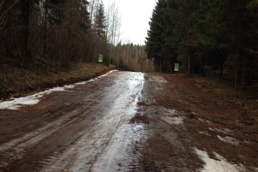 GALERII | Kolm nädalat Tartu maratonini - sula hävitas suusaraja!