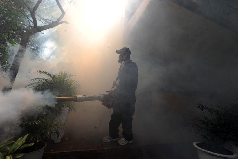 WHO kuulutas välja globaalse hädaolukorra Zika viiruse tõttu
