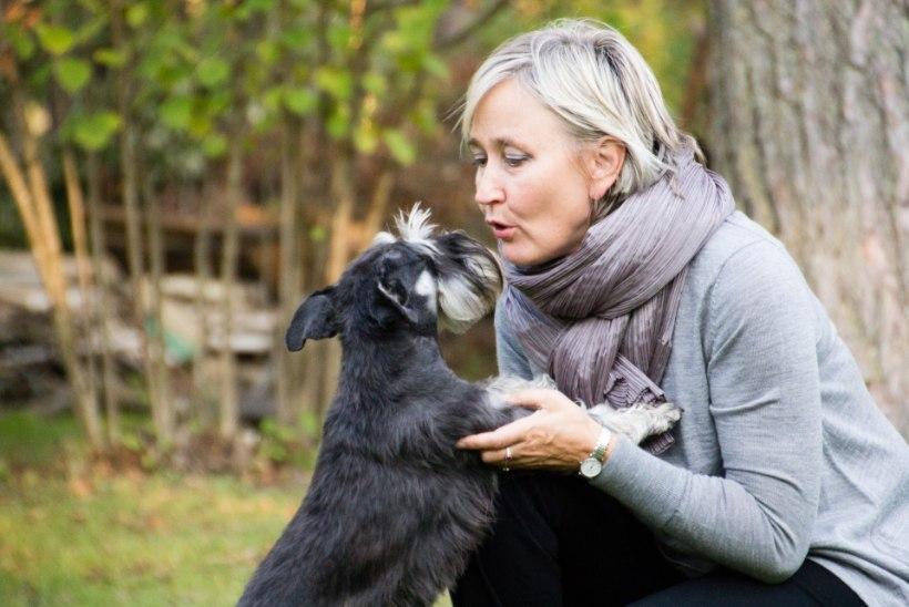 RIIGIKOGULASED MÄSSAVAD KANTSELEI VASTU: laske meie lemmikloomadel parlamenti jääda