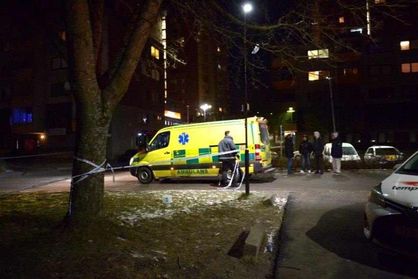 FOTOD   Rootsis visati Türgi kultuurikeskusele pomm