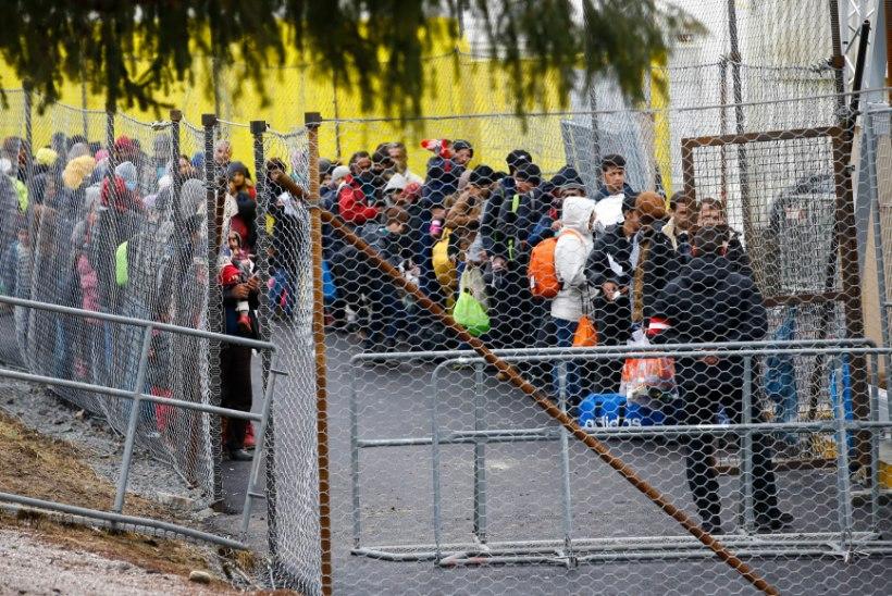 AUSTRIA EI HOOLI EUROOPA LIIDU KRIITIKAST: päevas lastakse üle piiri vaid 80 migranti