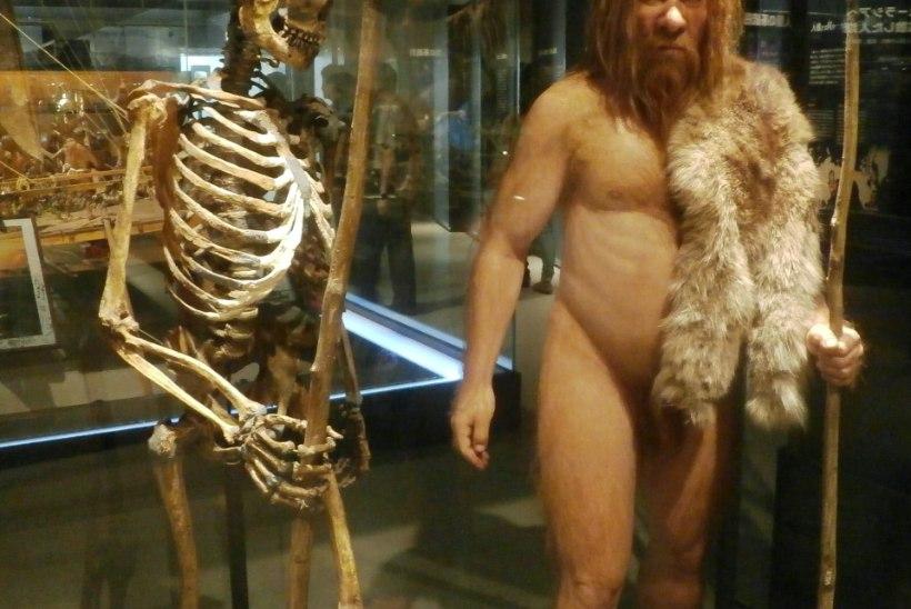 Mida neandertallased inimestele pärandasid?