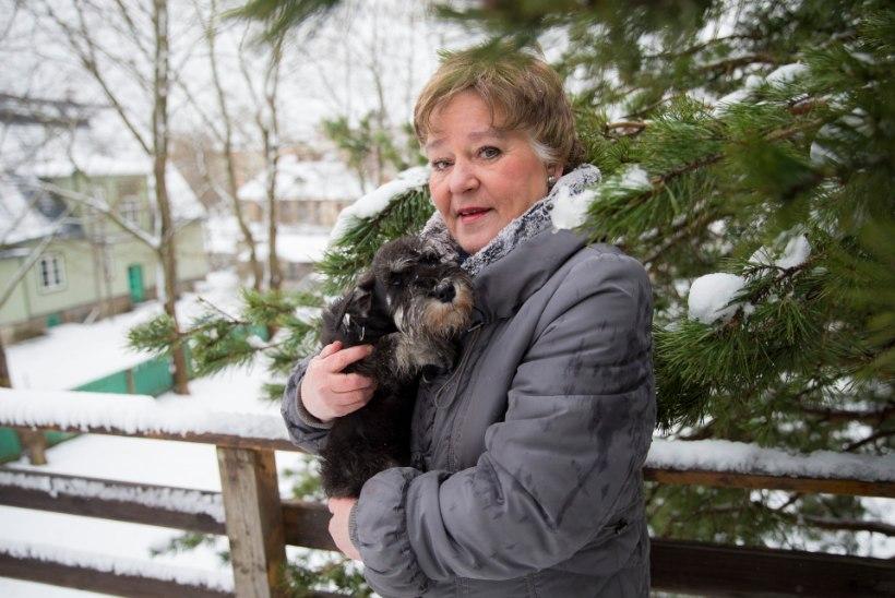 """Edda Paukson: """"Sünnihoroskoopi vaatan ka kõigi oma loomade puhul."""""""