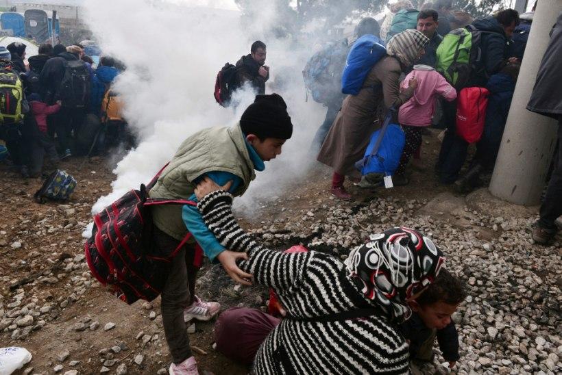 PILDID | Kaos Kreeka-Makedoonia piiril: põgenikud murdsid raudlatiga läbi okastraadi