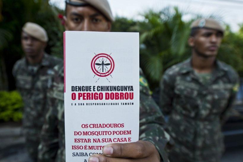 Brasiilia kuulutas sõja Zika viirust levitavatele sääskedele