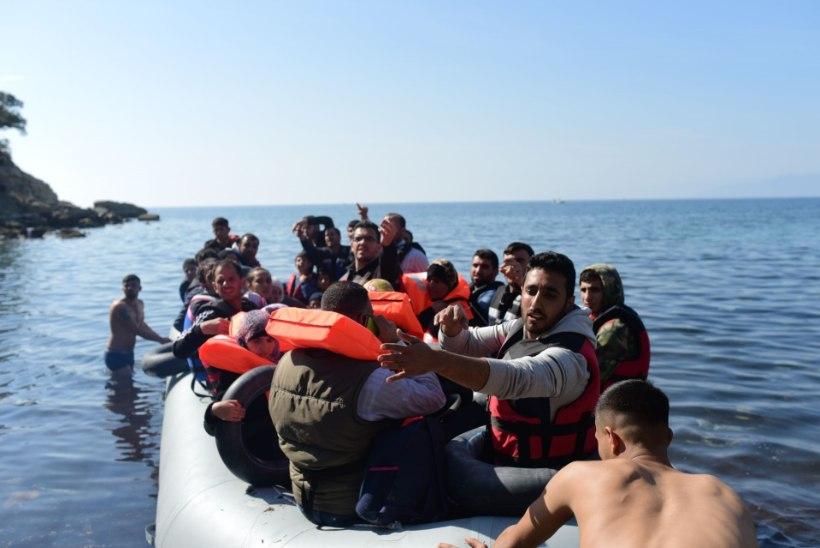 Põgenikevool ei näita vaibumismärke