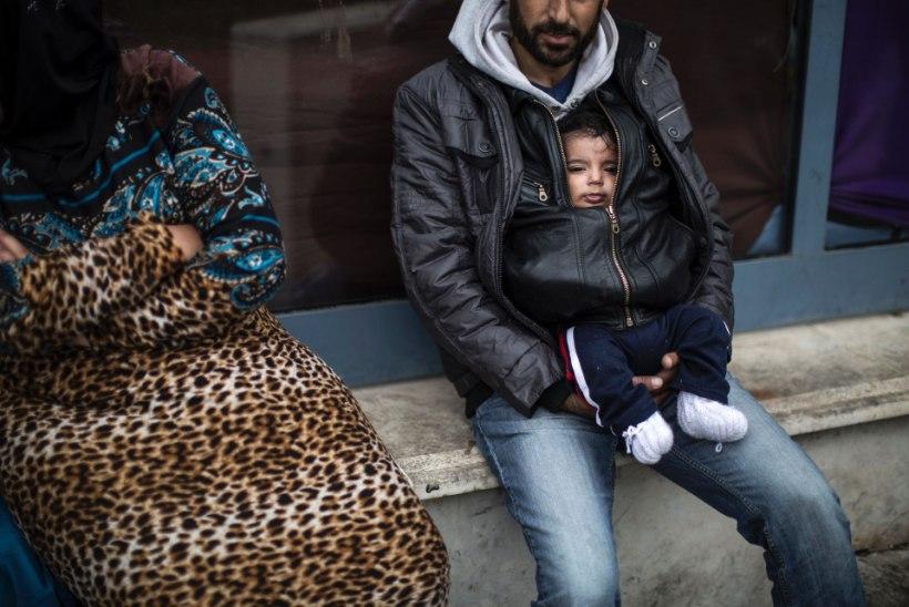 PORIMÜLGAS, IMIK JA OKASTRAAT: imik, kelle pagulasest ema peseb puhtaks pudeliveega keset pori