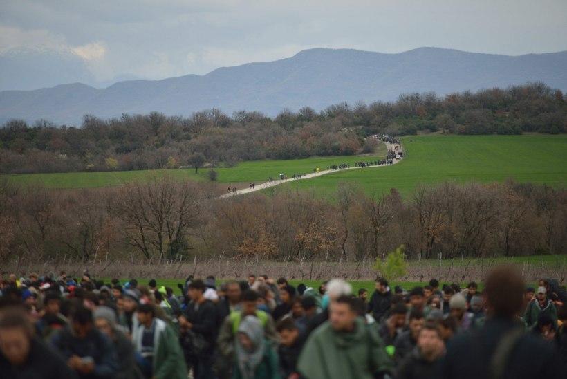 FOTOD | Vähemalt 2000 põgenikku tungis üle piiri Kreekast Makedooniasse