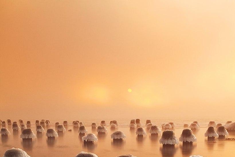 Andrei Reinol võitis taas ülemaailmsel fotokonkursil auhinna. Loe, kuidas see imeline võidufoto sündis!