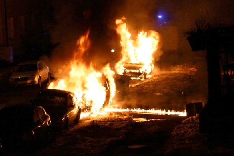 """""""Kõik lihtsalt ootasid ja vaatasid pealt, kuidas autod põlevad…"""""""