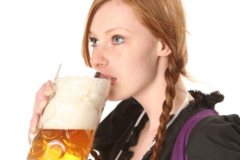 Viis head põhjust, miks oma tervise nimel õlut juua