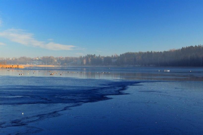 Peipsi järve jää on taas kalastajatele lukus