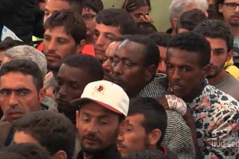 TV3 VIDEO | Ettevõtjad soovivad välistööjõu Eestisse toomise lihtsustamist
