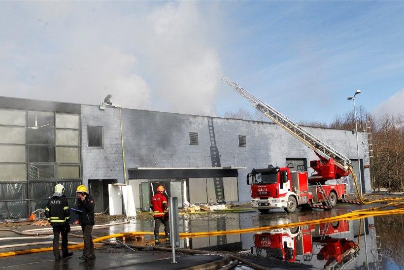 Päästeamet peab Maxima laohoone tulekahju esialgseks tekkepõhjuseks süütamist