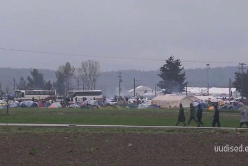 TV 3 VIDEO   Eesti võtab lähiajal Kreekast vastu esimesed seitse sõjapõgenikku. Lapsed hakkavad eestikeelses koolis õppima