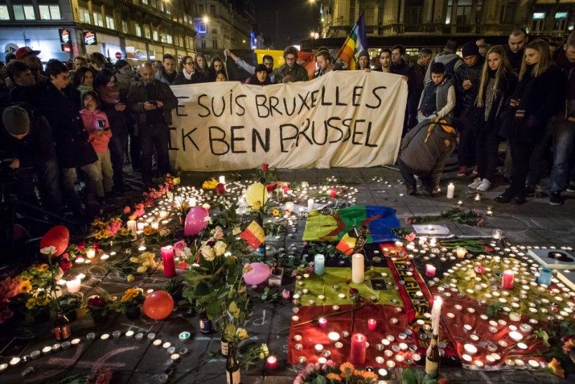 Belgia terrori noorim, 3aastane ohver heitleb elu eest