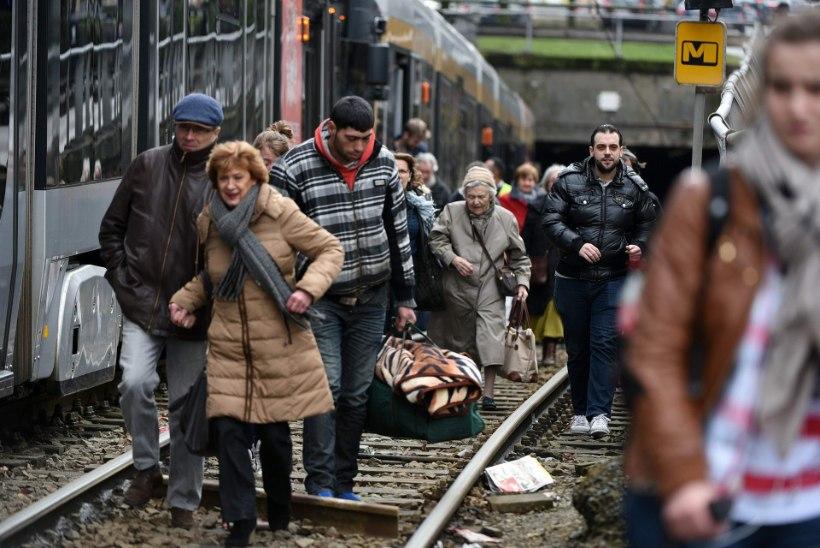 Brüsselis jätkub jaht terroristidele päevad läbi