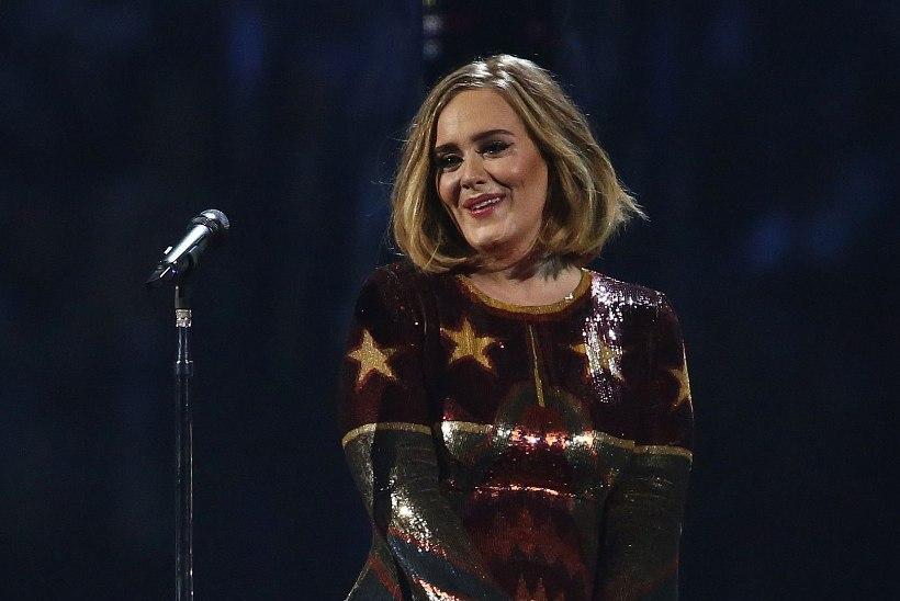 Lauljatar Adele'ile kasvas raseduse ajal habe