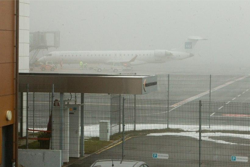 Paks udu segab Tallinna lennujaama tööd