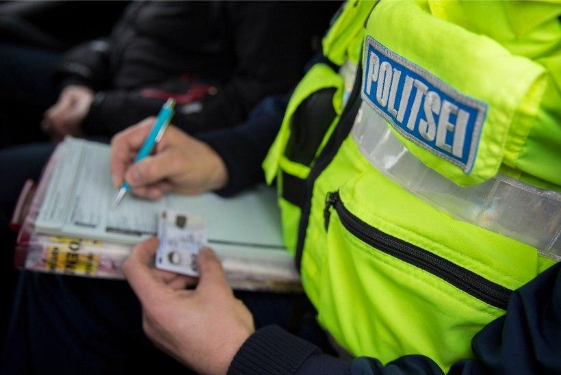 Kuidas piirivalvurid Tallinna sadamas illegaale ja varastatud kaupa otsivad