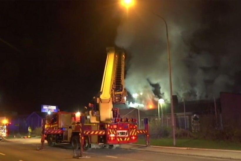 Rootsis Malmös pandi araabiakeelne erakool põlema