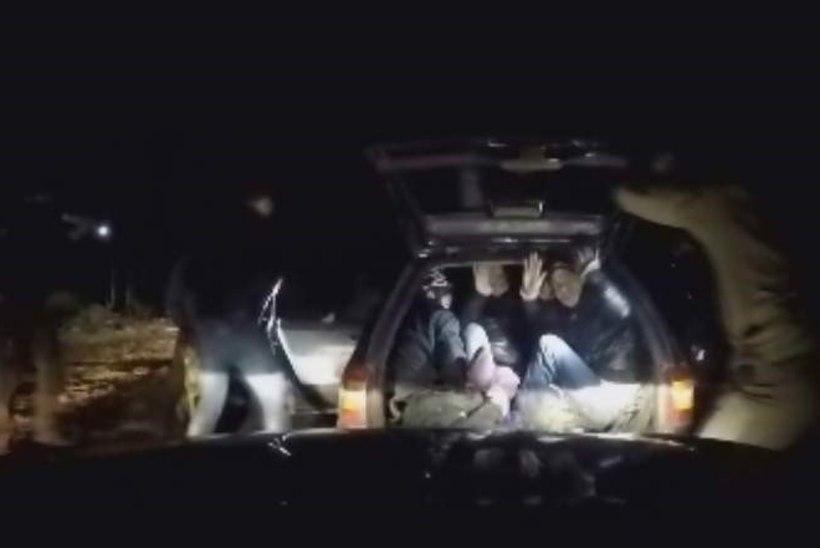 Uskumatu: Ford Mondeo pakiruumi pressiti 11 vietnamlast
