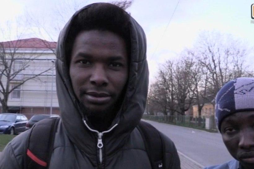 """""""REPORTERI"""" VIDEO   Mis saab edasi end Tallinna kodutute öömajja sisse seadnud illegaalsetest immigrantidest?"""