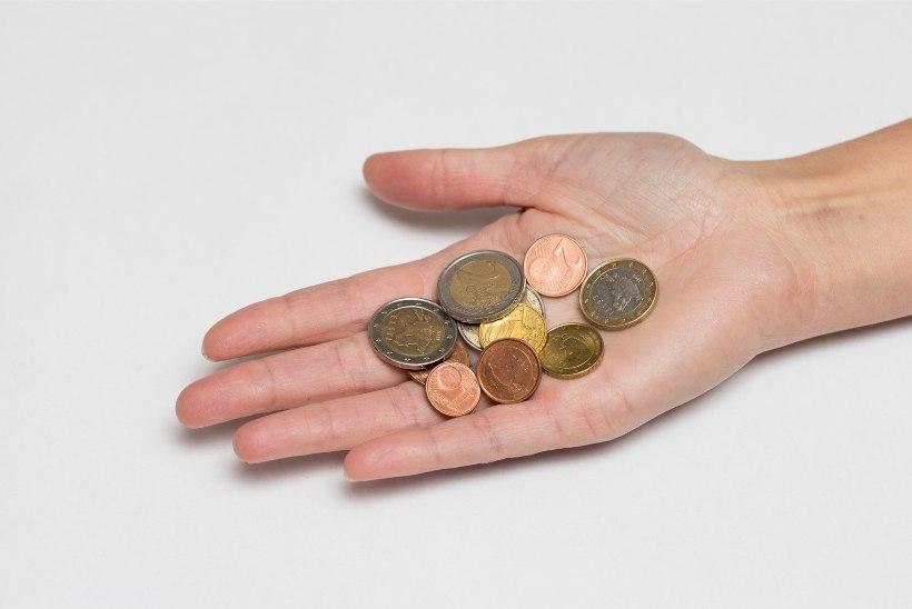 Käsipallurite dilemma rikkaks saada – panustada tööle või rahakale naisele?