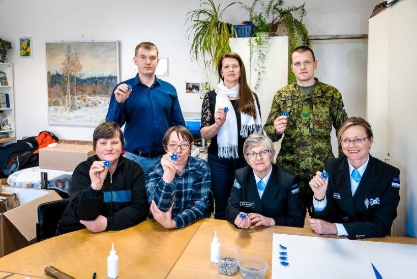 GALERII | 65 000 käsitööna valminud sinilille ootab heategevusliku kampaania algust