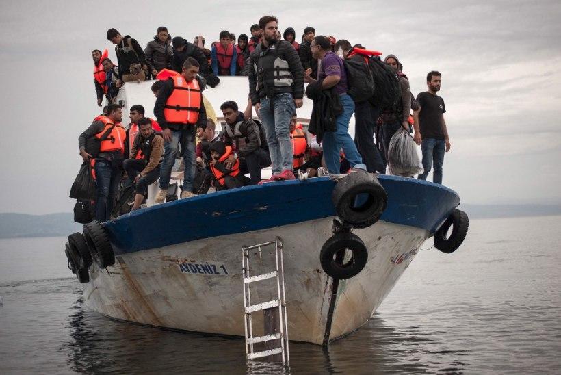 Kas Euroopa Komisjoni õiglusihalus toob meile pagulasi juurde? Aga paberil…