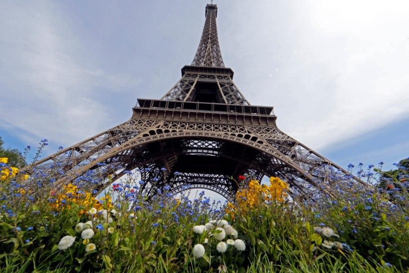 Pariis ja London terrorisihikul
