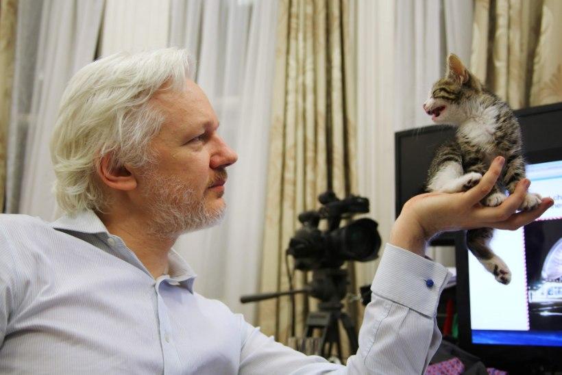 Laste kingitus Wikileaksi juhile