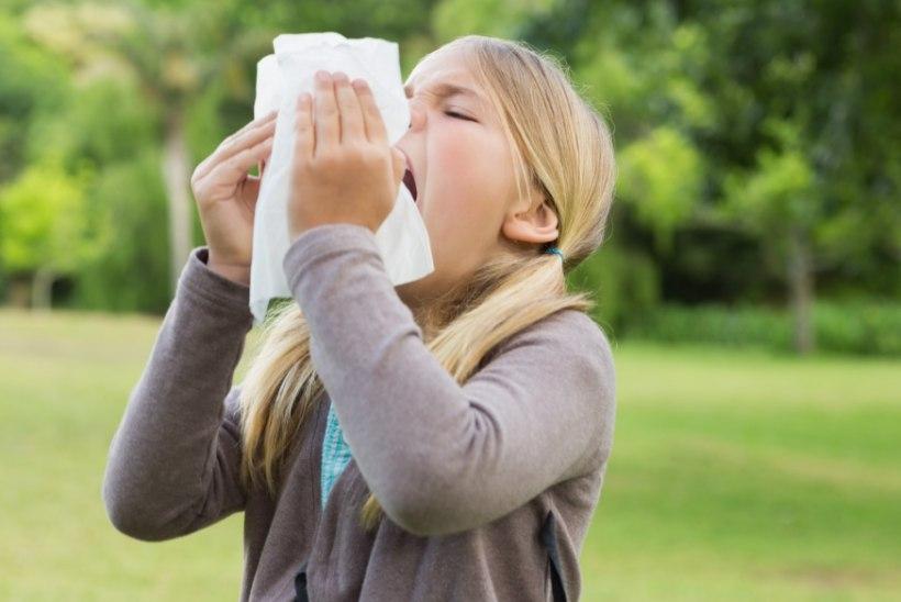 Beebi sünniaeg mõjutab tulevikus allergiate teket