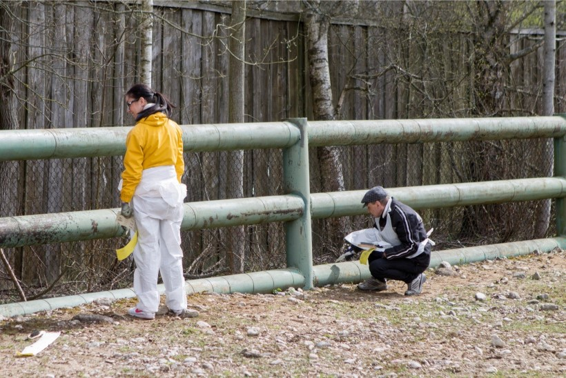 VÄRVITALGUD LOOMAAIAS: inimesi oodatakse appi pintseldama pinke, piknikulaudu ja aedu