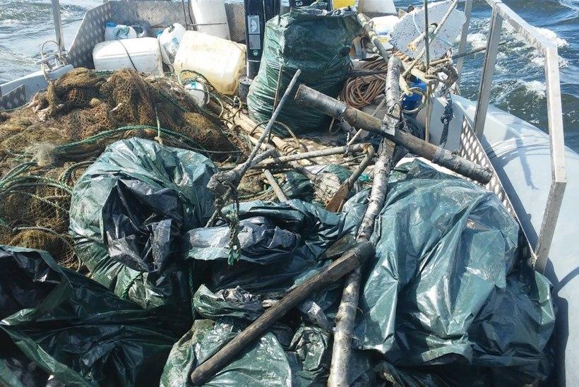 Peipsi järve põhjaosast tragiti välja üle 200 võrgu