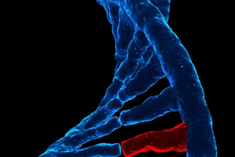 Vähk on 21. sajandi epideemia: hinda oma isiklikke riske