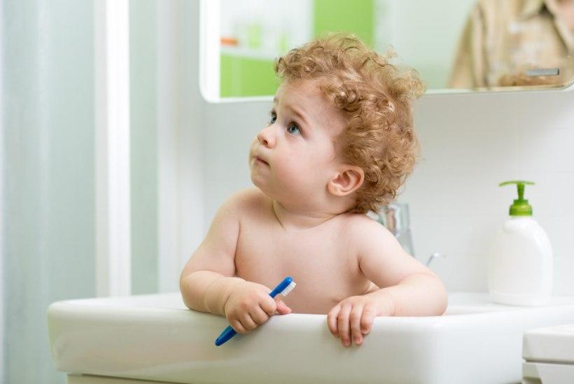 Terved hambad: mida väikelapse suuhügieeni puhul silmas pidada?