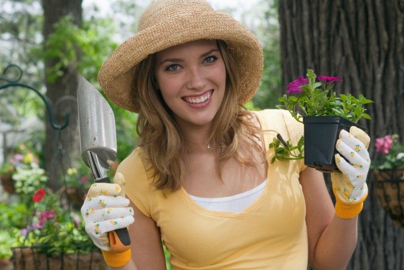 Aedniku ABC: kuidas aias askeldades liigeseid säästa?