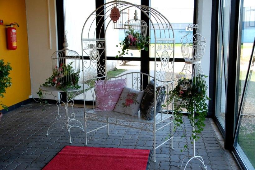 GALERII | Vaata, mida näeb täna-homme Tartus ilumessil