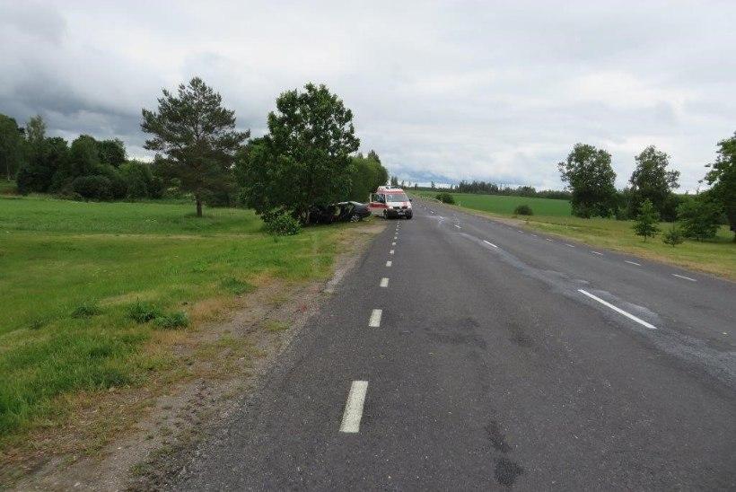 FOTOD SÜNDMUSKOHALT | Põlvamaal hukkus autoga vastu puud sõitnud mees