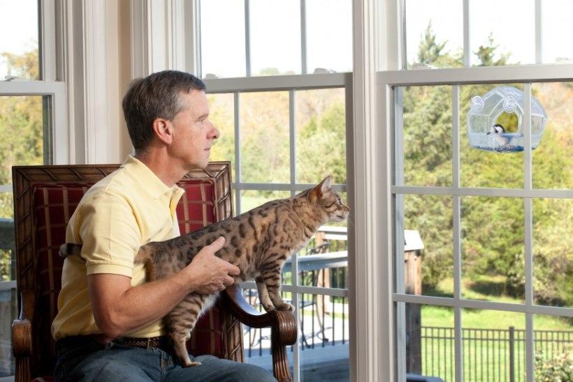 KUMMALINE MAAILM: mees läks töölt ära ja asus reisima… koos oma kassiga!