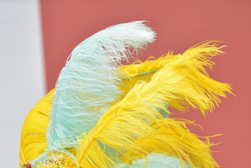 GALERII   Ascoti võiduajamised: kuningapere ja hullumeelsed kübarad