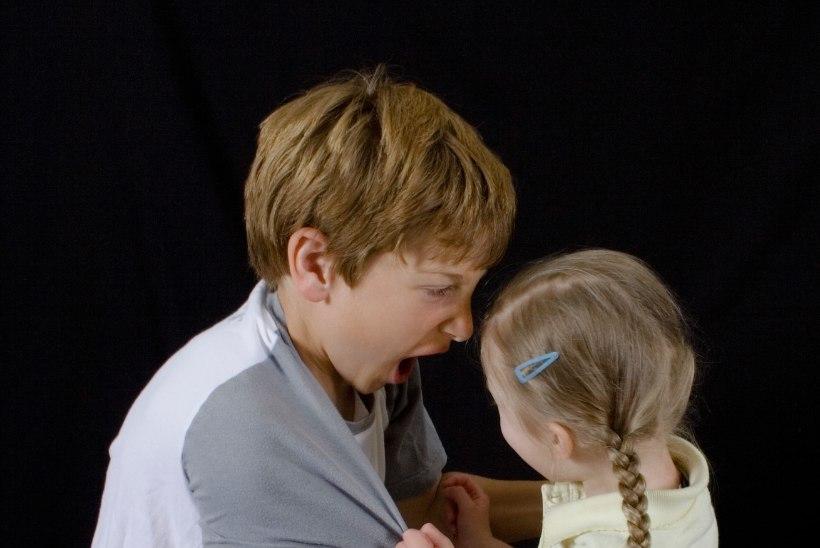 """Vihahood lapsepõlves: """"Õde lõi mulle vihahoos rehaga pähe, mina äsasin talle kättemaksuks raudkiigega."""""""