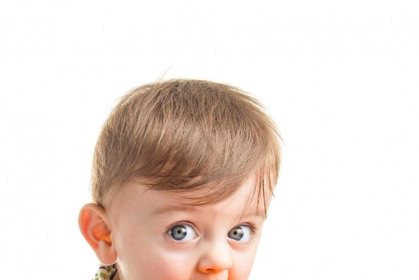 Mida peaks väikelaps näksima põhitoidukordade vahel?