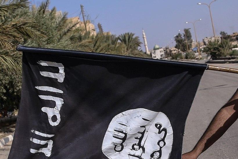 PERETRAGÖÖDIA: lennujaamas hukkunud tuneeslane oli läinud Türki päästma Islamiriigiga seotud poega