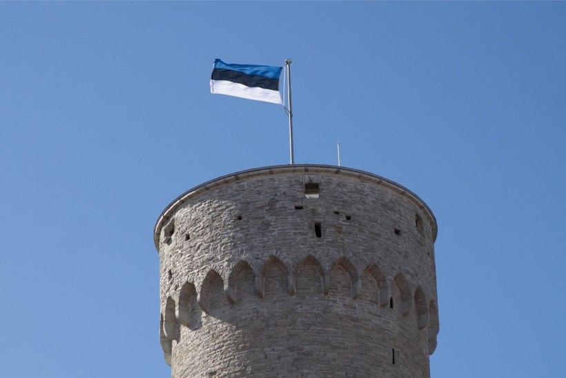 Eesti lipu päeval käis Pika Hermanni tornis enam kui pool tuhat inimest