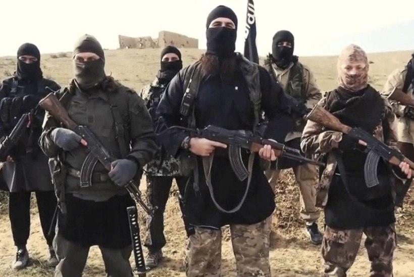 """KAOS JA PARANOIA: Islamiriik jahib oma ridadesse imbunud """"koputajaid"""""""