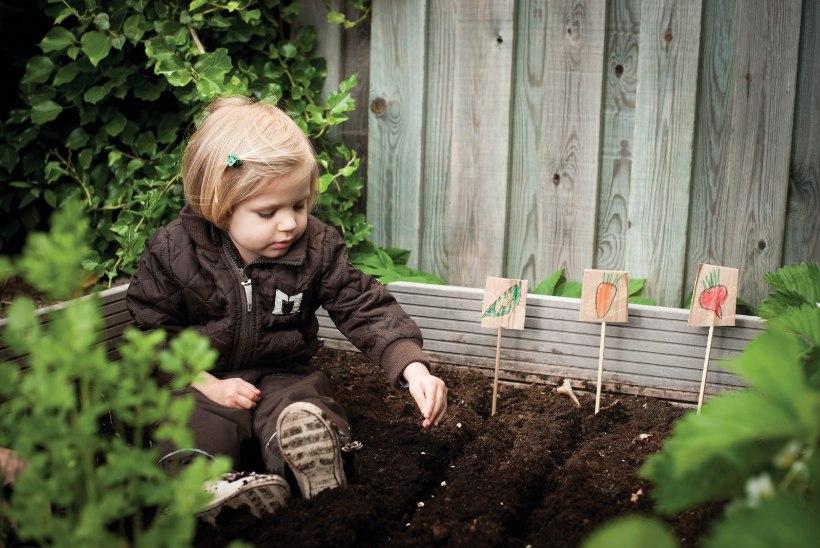 5 nõuannet, kuidas tekitada lapses aiandushuvi