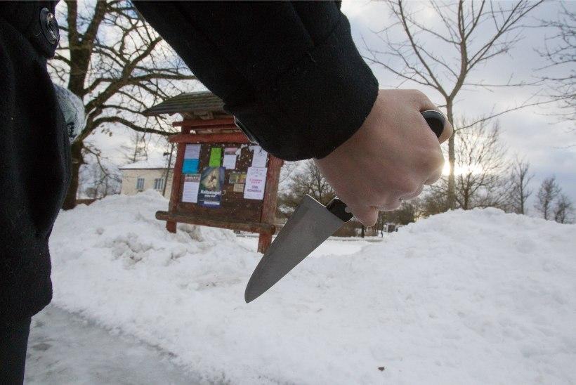 Prokuratuur süüdistab noort meest politseiniku tapmise katses