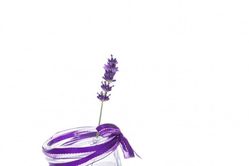 TEE ISE: Imelihtne lavendlilimonaad viib peavalu ja ärevuse